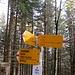 Der einzige Wegweiser. Eine alte Markierung habe ich nur weiter oben an der Bützelhütte und an der Felswand vom Zinggenchopf gesehen