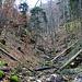 nochmal einen Blick in den Graben. könnte man diesem nach oben folgen, käme man auch auf den Wanderweg.