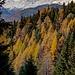 oberhalb Chastler: im Dunst Brunegghorn, Weisshorn