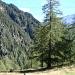 Blick ins Val Mesolcina