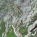 Discesa versante occidentale Monte Ignaga