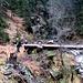 Dopo 5min c'e' un altro ruscello da passare, stavolta niente ponte, ci sarebbero quei due tronchi ma meglio camminare sul grasso ...<br />Ognuno cerca  il modo migliore per passare ... senza bagnarsi (o bagnandosi il meno possibile)