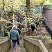 Besucherlenkung im Felsenmeer.