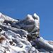 40m unterhalb der Gipfel war es für uns Schluss. Zu viel Eis.