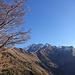 Herbst-Stimmung an den Hängen des Falknis