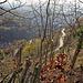 Wanderweg zur Starkenburg