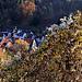 Unterwegs am Drosselbergweg