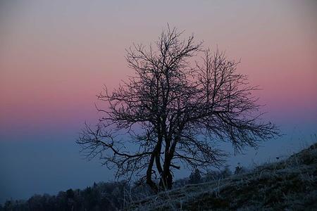 Frostiges Licht unterhalb des Passwanggipfels.