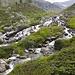 Den ganzen Weg durchs Tal bleibt man in Flussnähe.