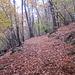 Sentiero Aga 550 mt - Pozzopiano 981 mt