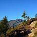 Am Höhenweg zur Goglesalm