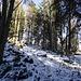 ...ehe es dann durch Schnee zum Gipfel des Schiffall geht,...