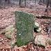 Dieser Stein erinnert an archäologische Arbeiten auf dem Berg.