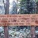 <b>Da Maria Ivana Trevisani Bach, Trekking nel bosco,  Ecozon@, 2015.  Calpestii lontani d'animali nascosti, su' secchi fogliami. L'ombra di un'ombra, impercettibile, appena mi sfiora mentre cammino nel bosco. Il sospiro di tutta la vita, per un attimo, soffia, leggero, sulla mia vita.</b>