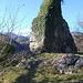 Die Reste von Herrenberg (Sevelen)