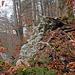 """""""Ruine"""" Neusummerau: letzter Mauerrest eines Türmchens. Vor ein paar Jahren war hier noch ein Mäuerchen zu sehen, das mittlerweile auch ins zu Tal gerutscht ist."""