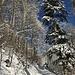 sonniges Winterambiente im Schwelligraben ...