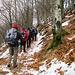 Lasciata l'Alpe Curgei, abbiamo ripercorso la breve salita nel bellissimo bosco di faggi che porta verso il colletto da cui, volgendo a destra, si sale al Pizzo Pernice.