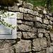 Mauerreste der Burg Altlägeren unterhalb von höchsten Punkt der Lägeren.  Foto von Wikipedia.