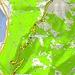 <b>Tracciato GPS Monte Generoso (parte alta).</b>