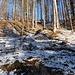 Der Schuh knirscht im gefrorenen Gras auf dem leichten, weglosen Anstieg zum südlichen Gipfelpunkt des Ramskopfs.