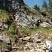 Der nordseitige Abstieg bereitet keine Schwierigkeiten - einmal krabbelt man eine Leiter hinab.