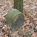 Alte Grenzsteinreihe (unbeschriftete Steine)