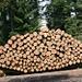 schön aufgeschichtet - unser stets nachwachsender Rohstoff Holz