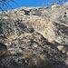 Placche spittate del monte Rama