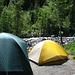 Thistledown primitive campground. Mehrere primitive sites liegen entlang der acces road zum Mt. Sneffels