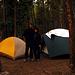 Elbert Creek Campground - Startpunkt für den Mt. Elbert und Mt. Massive. Einer der mehr frequentierten Campgrounds. Wir waren zweimal da, in verschiedenen Jahren, und praktisch für uns.
