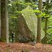 Der fantastische Boulderblock - wie rauf?