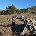 Monte Argentea: sentiero stella bianca
