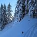 Weiter geht's, durch tief verschneite Waldabschnitte.