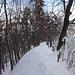 Alles frisch verschneit am Habrütispitz