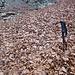 Autoscatto con foglie.