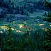 Ein malerischer Sumpf mit Sonnenaufgang