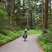 Au im Wald