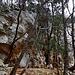 Si passa da essere totalmente in mezzo ai boschi a trovarsi di fronte pareti rocciose.