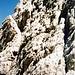 Der teils recht ausgesetzte Abstieg in die Bocca del Tuckett.