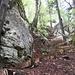 Abstieg mit steilen Stufen von der Roggenschnarz