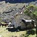 Cebollapampa: strutture ex campeggio