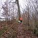 Pfad hoch nach Schlierholz