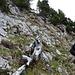 Im Abstieg Richtung Alp Zili