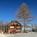 Appenzeller Haus in der Morgensonne, der prächtige Baum daneben macht das Häuschen um einiges attraktiver.