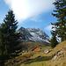Die Alpe Innergweil, einsam und verwaist zu dieser Jahreszeit.