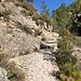 Der Barranc del Sinc ist im Wesentlichen als Klettergebiet bekannt, eignet sich aber auch zum Gänsegeiergucken