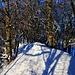 Skitour Helfenberg vom 5.2.2019:<br /><br />Westseitig folgte ich vom Helfenberggipfel dem schönen, winterlichen Grat bis kurz nach zur Kantonsgrenze wo man mit Ski über Weiden nach Nordosten abfahren kann.