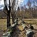 Il sentiero nei pressi di Argnaccia.