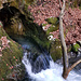 Die hübsche Quelle auf dem Weg zurück nach Rovio